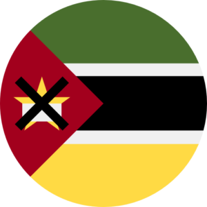 Total Database of 3,223,000 Mozambique's Mobile Phone Numbers (Total country database)
